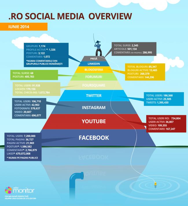 Overview social media iunie 2014